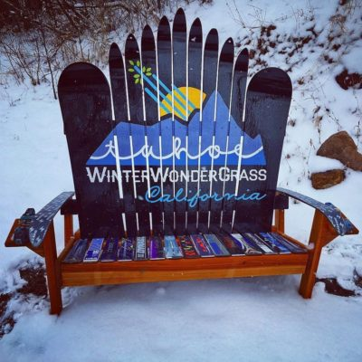 winterwondrgrassbench