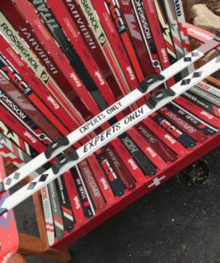 Experts Only Hand Painted Shot Ski